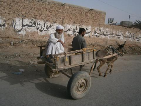 14 Donkey with people